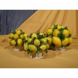 Round Basket Lemons