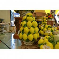 Pyramid Lemons