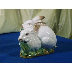 Couple White Rabbits