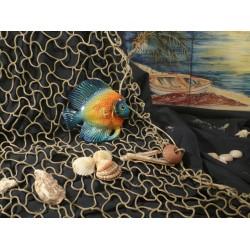 Pesce Discus Blu